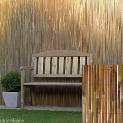 Small Image of 2m tall x 3m long Split Bamboo Screening