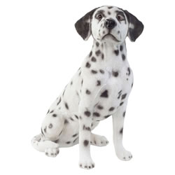 Small Image of Large Realistic 50cm Sitting Dalmatian Dog Statue Garden Ornament