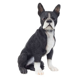 Small Image of Realistic 41cm Sitting Boston Terrier Dog Statue Garden Ornament