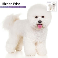 Small Image of Bichon Frise - 2016 18 Month Calendar