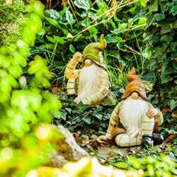 Extra image of Aspen & Juniper the Sitting Woodland Garden Gnome Ornaments