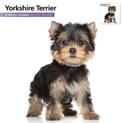 Small Image of Yorkshire Terrier - 2016 18 Month Calendar