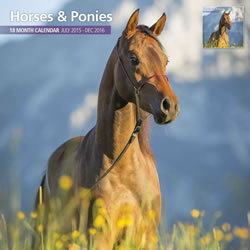 Small Image of Horses & Ponies 18 Month 2016 Traditional Wall Calendar