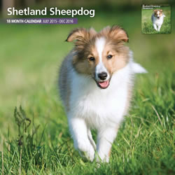 Small Image of Shetland Sheepdog - 2016 18 Month Traditional Calendar