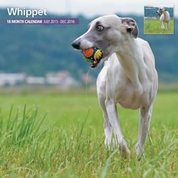 Small Image of Whippets - 2016 18 Month Traditional Calendar