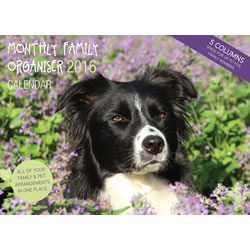 Small Image of Border Collie 12 Month 2016 A4 Planner