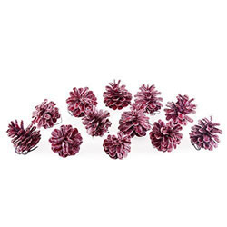 Small Image of Set of Twelve Red Waxed Pine Cone Christmas Accessory Decorations