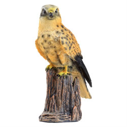 Small Image of Realistic Polyresin 22cm Kestral Bird of Prey Garden Ornament