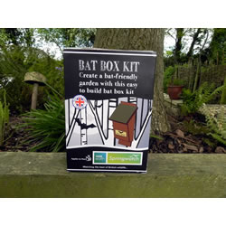 Small Image of Apples to Pears Springwatch Bat Box Kit Gift