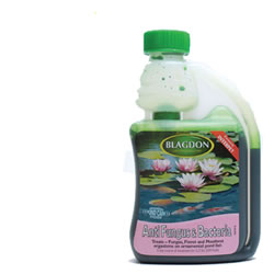 Small Image of Blagdon Anti Fungus and Bacteria 250ml