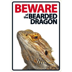 Small Image of Beware Of The Bearded Dragon