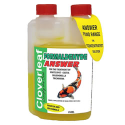 Small Image of Cloverleaf Formaldehyde Answer 250ML