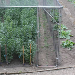 Small Image of Heavy Duty Fruit Cage Door