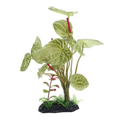 Small Image of Fluval Large Lotus Plant 25cm