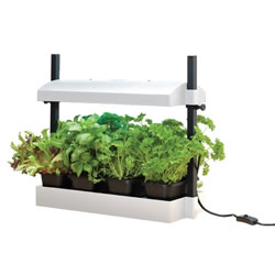 Small Image of Garland Micro Grow Light Garden Propagator