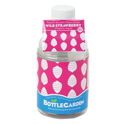 Small Image of Nutley's Wild Strawberry Bottle Garden Hydroponics Grow Your Own Gift