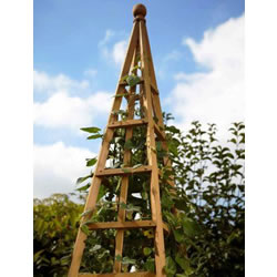 Small Image of Large (1.9m) Wooden Garden Obelisk