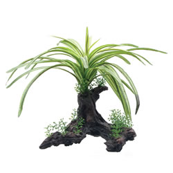 Small Image of Fluval Fountain Plant on Root 25cm