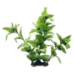Small Image of Fluval Lizards Tail Plant 40cm