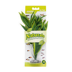 Small Image of Marina Naturals Green Dracena Silk Plant - Medium