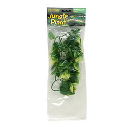 Small Image of Exo Terra Plastic Amapallo Plant Small