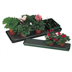 Small Image of Pack Of Two Self Watering Trays 60cm x 60cm
