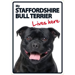 Small Image of Staffordshire Bull Terrier - Lives Here A5 Plastic Sign