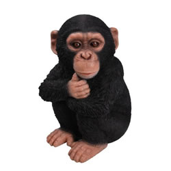 Small Image of Vivid Arts Real Life Baby Chimpanzee XRL-CHM2-D