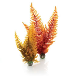 Small Image of BiOrb Autumn Ferns Plant Pack