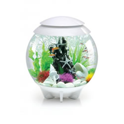 Small Image of BiOrb HALO 30 Moonlight LED Aquarium - White