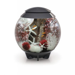 Small Image of BiOrb HALO 60 Moonlight LED Aquarium - Grey