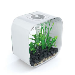Small Image of BiOrb LIFE 30 Aquarium - White