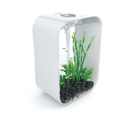 Small Image of BiOrb LIFE 60 Aquarium - White