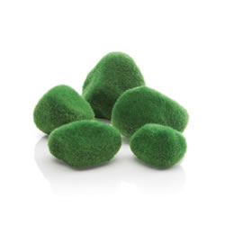 Small Image of BiOrb Moss Pebbles