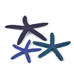 Small Image of BiOrb Star Fish - Blue