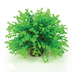 Small Image of BiOrb Topiary Ball - Green