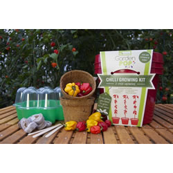 Small Image of GardenPop Chilli Growing Kit - With Seed Propagator