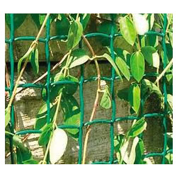 Small Image of Climbanet 5m x 1m  Garden Trellis Netting - Green
