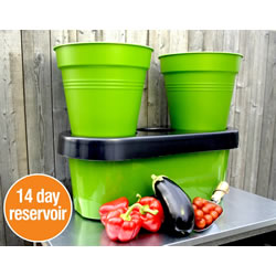 Small Image of Duogrow Holiday-Proof Garden Planter