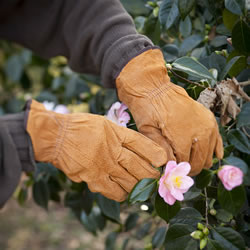 Small Image of Gardening Gloves
