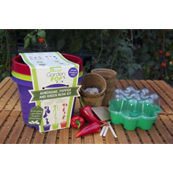 Small Image of GardenPop Rainbow Veg Growing Kit - With Seed Propagator