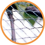 Small Image of 10m x 4m* Bird and Pond Netting Green Woven Garden