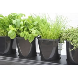 Small Image of Herb Growing Planter x2