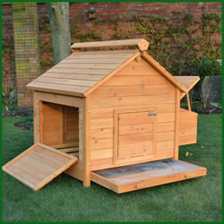 Small Image of Large House L Chicken Coop - 8 Bird Home Model