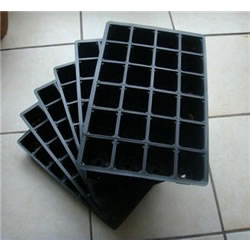 Small Image of 6x 24-Cell Seed Tray Cavity Inserts: Recycled Plastic