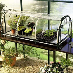 Small Image of Bio Green Jumbo Propagator