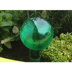 Small Image of Aqua Balance Watering Spike with 650ml Bottle Watering System