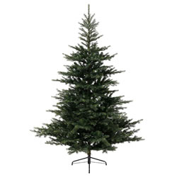 Small Image of Kaemingk 210cm (7ft) Grandis Fir Artificial Christmas Tree (681452)