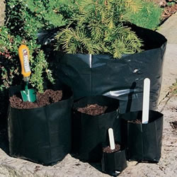 Small Image of 100x 1-litre Polypots Polythene plant pots