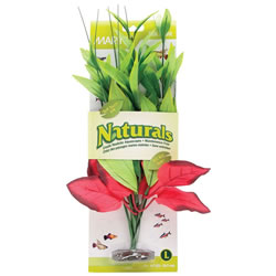 Small Image of Marina Naturals Red/Green Pickerel Silk Plant - Large